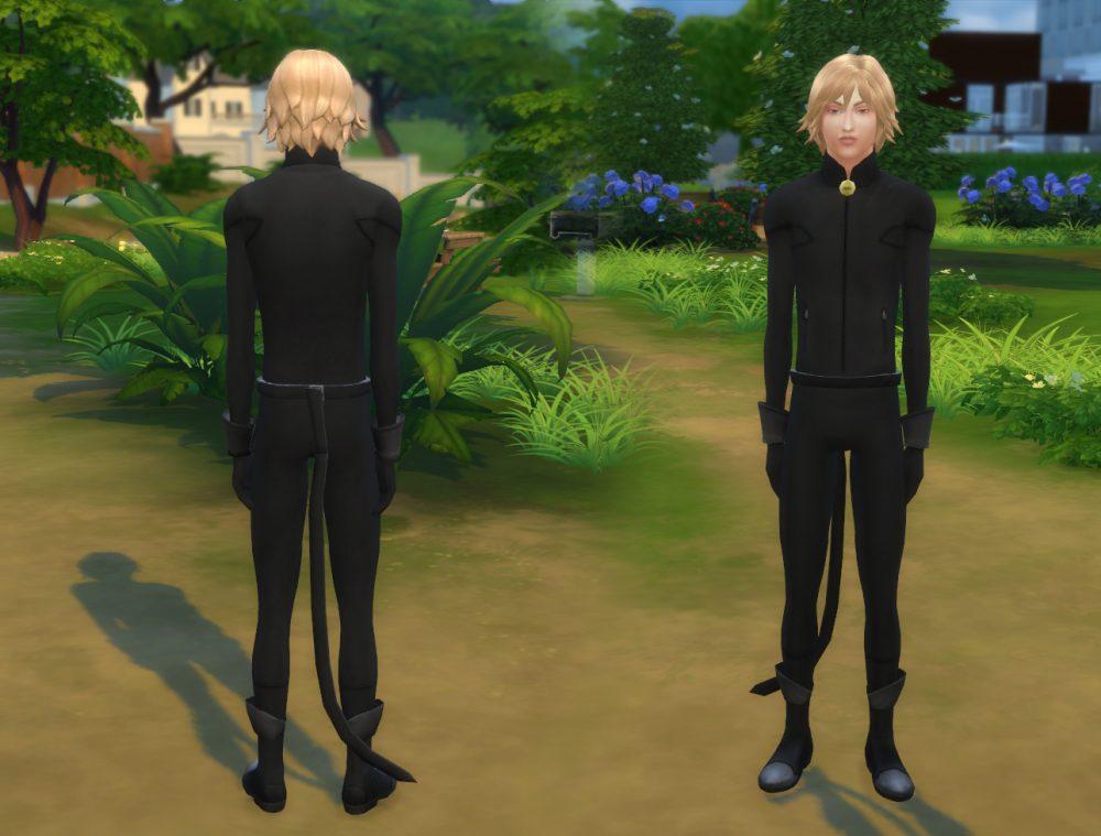 Cat Noir Outfit