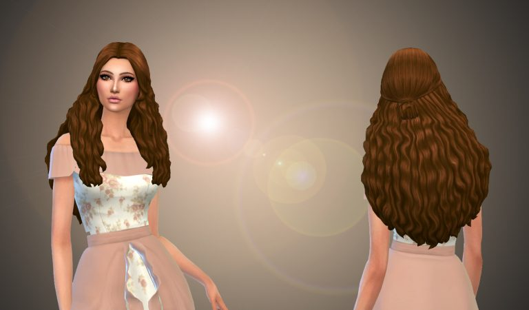 Nancy Hairstyle – Speed Meshing